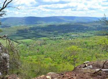 Bluff View