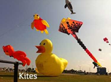 Kites at the Sculpture Fields at Montague Park