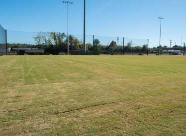 Sports Complex Grass Field
