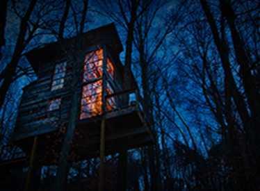 Treetop Hideaways at night