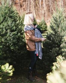 Snicker's Gap Christmas Tree Farm