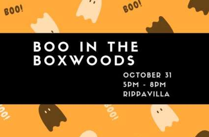Boo in the Boxwoods