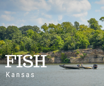 Click Here for Fish Kansas Info
