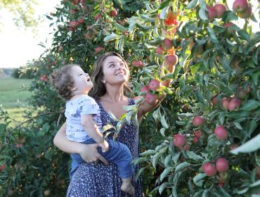 21st Wayne County Apple Tasting Tour