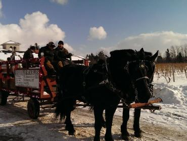 11th Annual NY Ice Wine and Culinary Festival