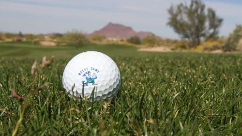 Longbow Golf Club Golf Ball