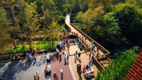 Copy of Riverwalk  in Hillsborough