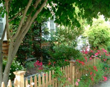 Bird Song Cottage