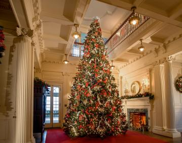 https://res.cloudinary.com/simpleview/image/upload/crm/newportri/blithewold-christmas-tree_credit-Blithewold_a75319a2-5056-b3a8-494d1f9c9852459e.jpg