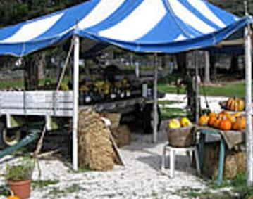 Jamestown Market