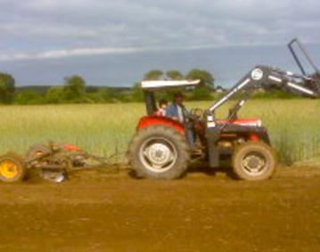 Mellos Farm