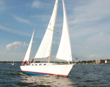 Top Cat Sailing
