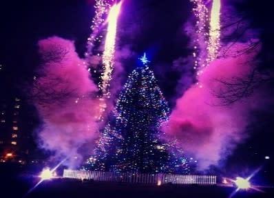 Common Christmas Tree Lighting