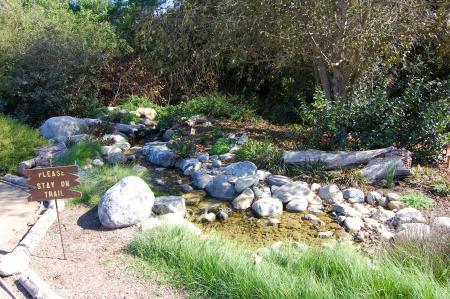 Stream along a Shipley trail (Photo by Lauren Lloyd)