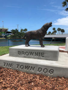 Brownie the Town Dog