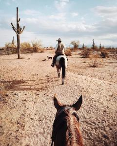 Fort McDowell Adventures Horseback Riding - Crowdriff