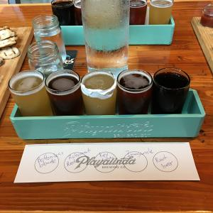 Playalinda Brewery Brix Project beer flight