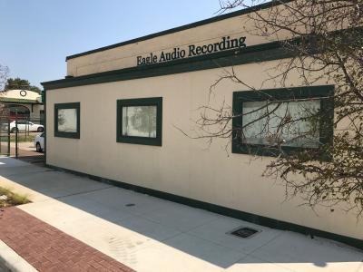 Eagle Audio Recording