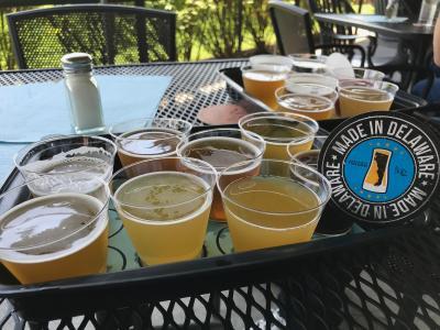 Iron Hill DE Beerfest
