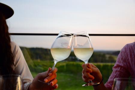 Wine Tasting on Old Mission Peninsula