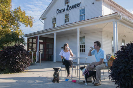 cocoa-beanery-coffee-pet-friendly-dogs