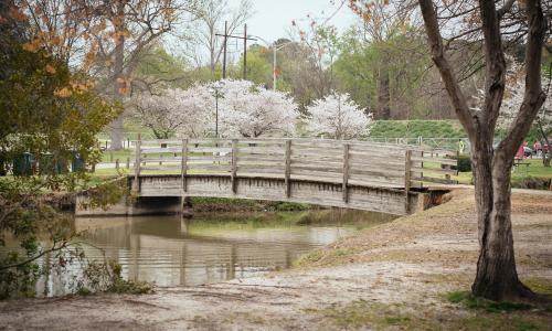 Central City Park Bridge