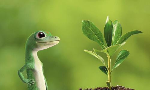 GEICO gecko with plant for Earth Day