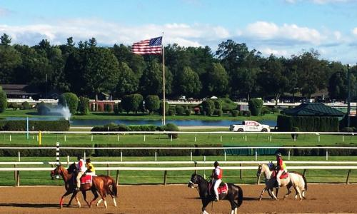 Saratoga Race Course horses standing on track