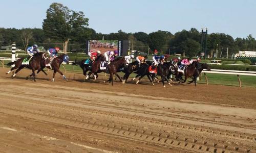 Saratoga Race Course horses racing