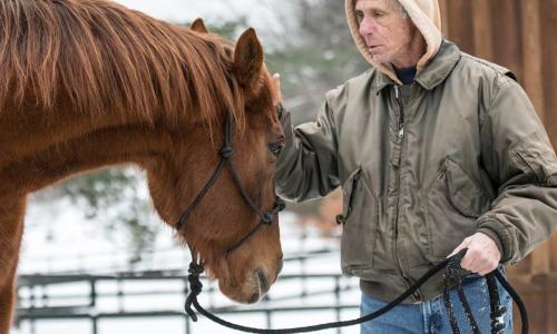 Old Friends at Cabin Creek Man Petting Head