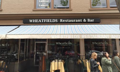 Wheatfields 7