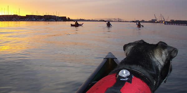 Kayak Oakland Estuary