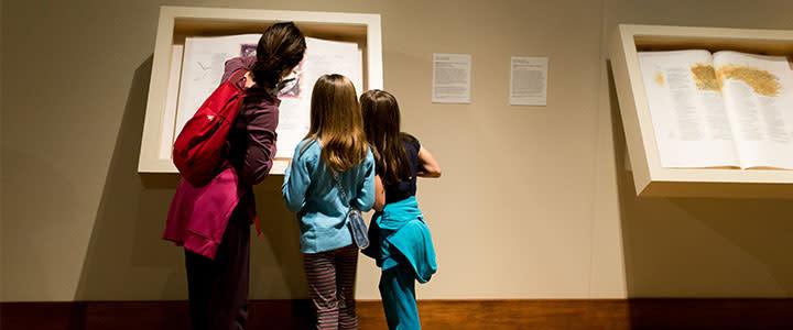 Explore the art galleries
