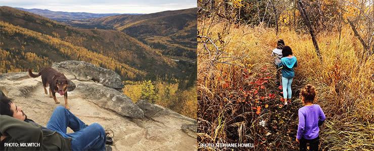 Fall Hiking and geochaching In Fairbanks Alaska