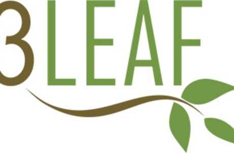 3 Leaf Tea for TourCayuga