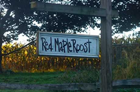 Red Maple Roost for TourCayuga