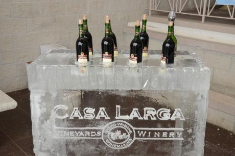 Ice Sculpture Bar at the New York State Ice Wine & Culinary Festival