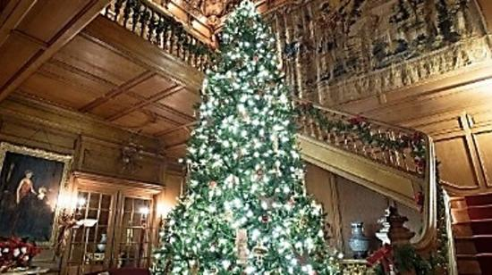 A Gilded Age Christmas