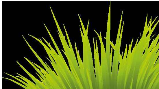 Green travel logo