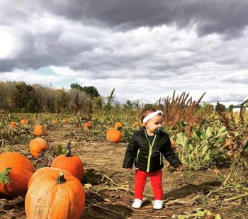 Little Girl pumpkin picking at Jacquemin Farms