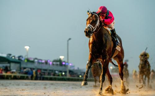 Pegasus World Cup at Gulfstream