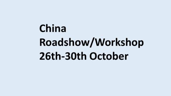 China workshop 2020