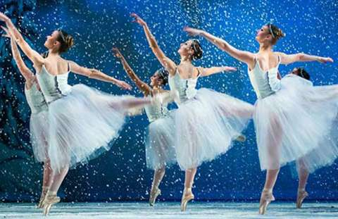 "American Youth Ballet ""The Nutcracker"""