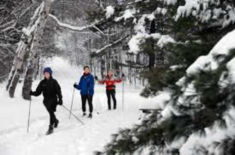 Cross country skiing on canal