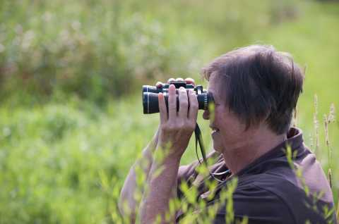 Great Swamp Conservancy Birding
