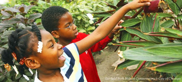 Children at the Garfield Park Conservatory in Chicago
