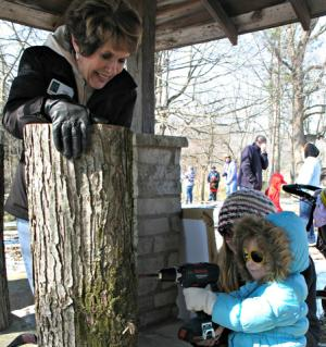 Maple Syrup Days tree-tapping demonstration