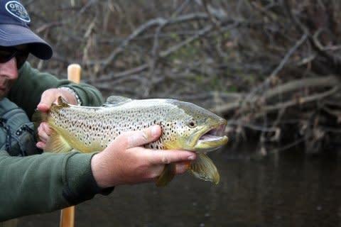Winter Fishing in PA