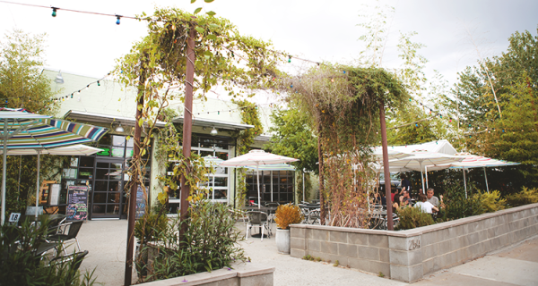 Ted's Most Best Patio