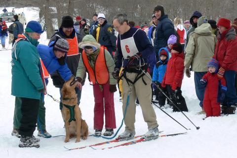 dog sledding at Mendon Ponds Winterfest